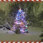 """Spruce with LED lights and Holiday Frame 1"" by rjg-productions"