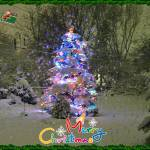 """Spruce with holiday lights with text & image added"" by rjg-productions"