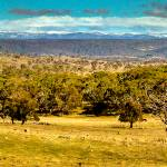 """The Winter Horizon -NSW"" by gthomas68"