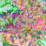 """""""Leaves and Colors"""" by Juany"""