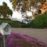 """Coastal Mailbox - Santa Cruz, CA"" by SusanKessler"