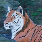 """TIGER GAZE 2009"" by cabartbycindybeck"