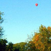 autumn hot air balloon Art Prints & Posters by DonnaMarie Ellington