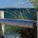 """Fence Post"" by kml"