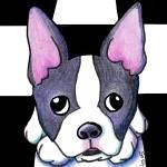 """""""Boston Terrier"""" by KiniArt"""