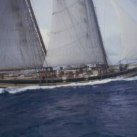 Pride ll Crew Setting Sail Honolulu Hawaii Art Prints & Posters by Bill McAllen