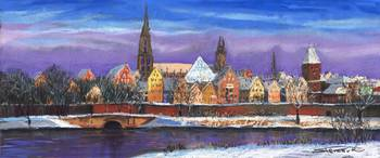 Germany Ulm Winter Panorama
