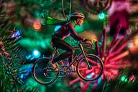The Holiday Cyclist