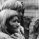 """Homage, Edward Weston, Apache elders, rodeo"" by davidleeguss"