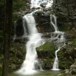 """Burstarse Falls"" by Michele"