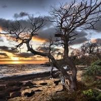 Kauai Sunrise Art Prints & Posters by Philip James Filia