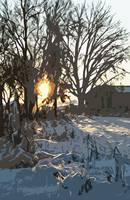 Sunrise in Winter at the Farm