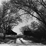 """Homage, John Szarkowski, 1930"