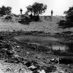 """Homage, Frederick Sommer, drought, water hole"" by davidleeguss"