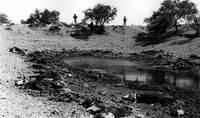 Homage, Frederick Sommer, drought, water hole