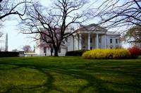 The White House II