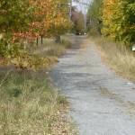 """""""Fall Lane 3"""" by ErictheElder"""