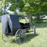 """Mennonite Wagon"" by ErictheElder"