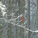 """The Red Birdhouse"" by ErictheElder"