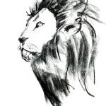 """Portrait of a Lion"" by AbinRaj"