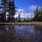 """Mt Rainier Plummer Peak"" by bob80"