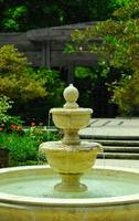 Botanical Water Fountain