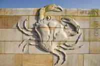 Inshore Crab-The Artwork