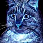 """Digital Electric Kitty in Blue"" by bjasmine"