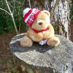 """Country Christmas Bear"" by photographybydonna"