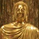 """Buddha Bust"" by susanshipman"