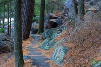 Tumbled Rocks Trail