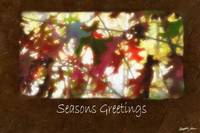 Jean Autumn Leaves 12 Seasons Greetings