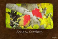 Ariana Autumn Leaves 5 Seasons Greetings