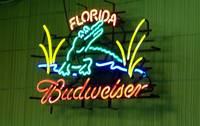 Clearwater Florida Bar