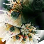 """""""Vibrantly Alive"""" by jennabee25"""
