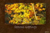 Ariana Autumn Leaves 9 Seasons Greetings