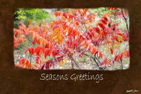 Jean Autumn Leaves 7 Seasons Greetings