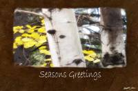 Jean Autumn Leaves 5 Seasons Greetings