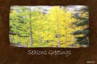 Jean Autumn Leaves 3 Seasons Greetings