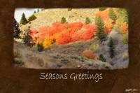 Jean Autumn Leaves 1 Seasons Greetings