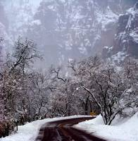 Zion NP 2805