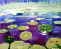 Water lily Patch