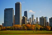 Chicago Autumn Field