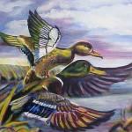 """""""Ducks"""" by CDarleneCollins"""