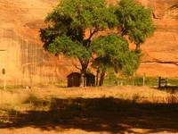 Canyon de Chelly-4661