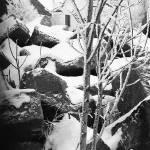 """""""lit homage, James Joyce, """"The Dead,"""" Aberdeen, SD"""" by davidleeguss"""