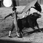 """Homage, Hemingway, ""Sun Also Rises,"" bullfight"" by davidleeguss"