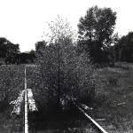 """""""Robert Frost, """"The Road Not Taken,"""" ghost town"""" by davidleeguss"""
