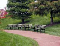The Benches...