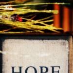 """""""hope"""" by 2ndspring"""